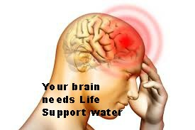 brain-alkaline-water.jpg